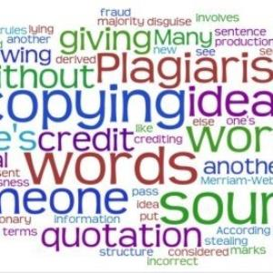 PLAGIARISM: where do you draw the line?
